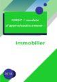 IOBSP 1 module d'approfondissement immobilier