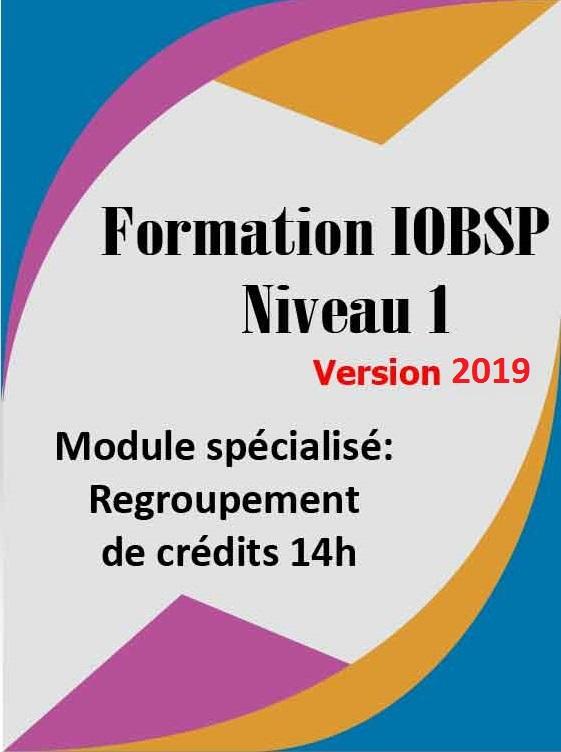 La formation IOBSP niveau 1